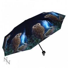 Umbrelă cu bufnițe Calea vrăjitoarelor - Umbrela Copii