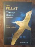 Dinu Pillat - Tinerete ciudata si alte scrieri