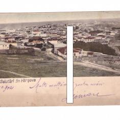 CP Harsova - Panorama, 1904, circulata, Fotografie