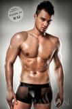 Boxeri erotici barbatesti Calvin