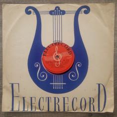 Disc, placa patefon/ gramofon Electrecord// Muzica romaneasca, Alte tipuri suport muzica
