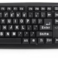 Tastatura USB pentru seniori, 104 taste, Esperanza Florida - Tastatura PC