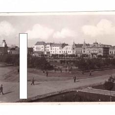 CP Satu Mare - Piata Libertatii/Horthy Miklos, 1942, animata, circulata, Fotografie