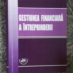 GESTIUNEA FINANCIARA A INTREPRINDERII - VASILESCU , SICHIGEA