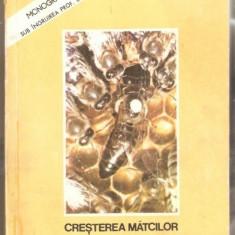 CRESTEREA MATCILOR - RUTTNER - CARTE ORIGINALA , STARE FOARTE BUNA .