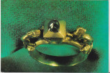 Bnk cp Inelul voievodului Vladislav I - vedere - necirculata
