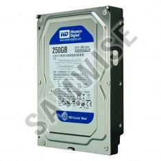 Hard Disk 250GB WESTERN DIGITAL, SATA2, 7200rpm, WD2500AAJS Blue, 200-499 GB