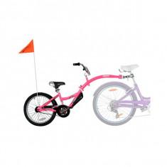 Bicicleta Co-Pilot Roz WeeRide WR06PK B3302564 - Bicicleta copii
