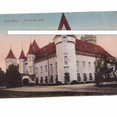 CP Carei - Castelul, 1910, necirculata