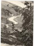 CPI B 10418 CARTE POSTALA - DRUMUL DE LA RUCAR LA DAMBOVICIOARA, ARGES, MUSCEL, Circulata, Fotografie