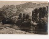 CPI B 10484 CARTE POSTALA - MUNTII APUSENI. PE VALEA ARIESULUI, RPR, Circulata, Fotografie