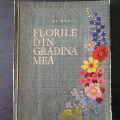 AL. BORZA - FLORILE DIN GRADINA MEA