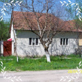 Casa la tara cu piscina langa rau Brazii Arad