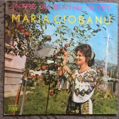 Maria ciobanu intre jiu si ntre oltet album disc vinyl muzica populara folclor, VINIL, electrecord
