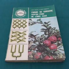 FORME DE COROANE PENTRU POMII DE LÂNGĂ CASĂ/ION MILIȚIU/1986 - Carte gradinarit