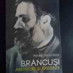 Brancusi Amintiri Si Exegeze - Petre Pandrea, 540952 - Album Arta