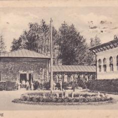 CAMPULUNG BAILE  CIRCULATA 1924,ROMANIA., Campulung Moldovenesc, Fotografie