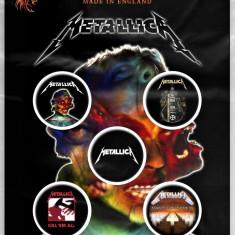 Insigne Metallica: Hardwired...To Self-Destruct
