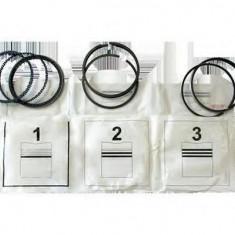 Set segmenti piston DACIA LOGAN (LS) (2004 - 2016) ASAM 30639 - Segmenti auto