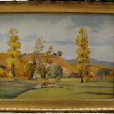 Tablou Mihail Fzekaly - Peisaj de vara pictat in ulei inramat 35x45cm, Peisaje, Realism