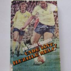"""Carte fotbal - """"Unde sint iluziile mele?"""" de Dan Claudiu Tanasescu"""
