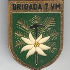 BRIGADA 7 VANATORI DE MUNTE  Insigna MILITARA email -  RARA