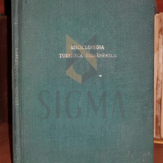 PUSCARIU VALERIU (Vice-Presedinte al Turing-Clubului Roman)