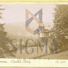 CARTE POSTALA, SINAIA, CASTELUL PELES, 1901
