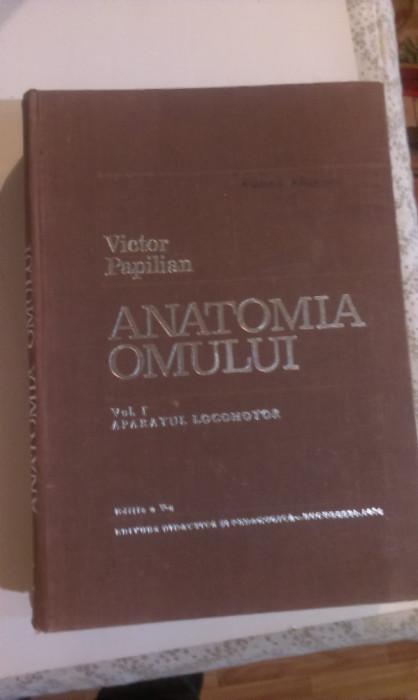 ANATOMIA  OMULUI  2 VOLUME - V. PAPILIAN foto mare