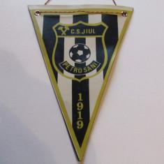 Fanion fotbal - JIUL PETROSANI