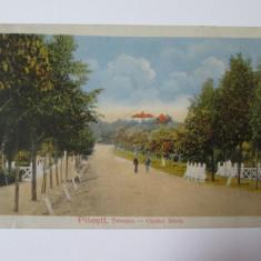Carte postala Pitesti-Ocolul silvic Trivalea,circulata 1918-KUK Com.Telegraf WWI, Printata