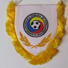 Fanion FRF fotbal ROMANIA (Campionatul Mondial SUA 1994)