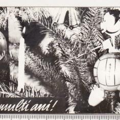 bnk cld Calendar de buzunar 1972 - Loto Pronosport - Pronosport