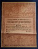 Titlu de proprietate - 1923 - judetul Ilfov - Cernica - Ferdinand I
