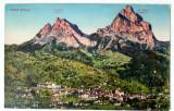 Carte postala veche Elvetia - Postkarte - Peisaj Montan - Varfuri, Germania, Circulata, Fotografie