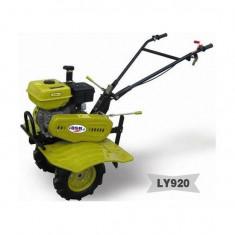 Motosapa DAKARD LY920 cositoare