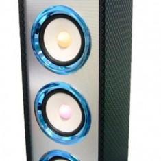 Boxa portabila Karaoke Bluetooth 15 W, mp3 Radio USB TF/ micro SD,lumini