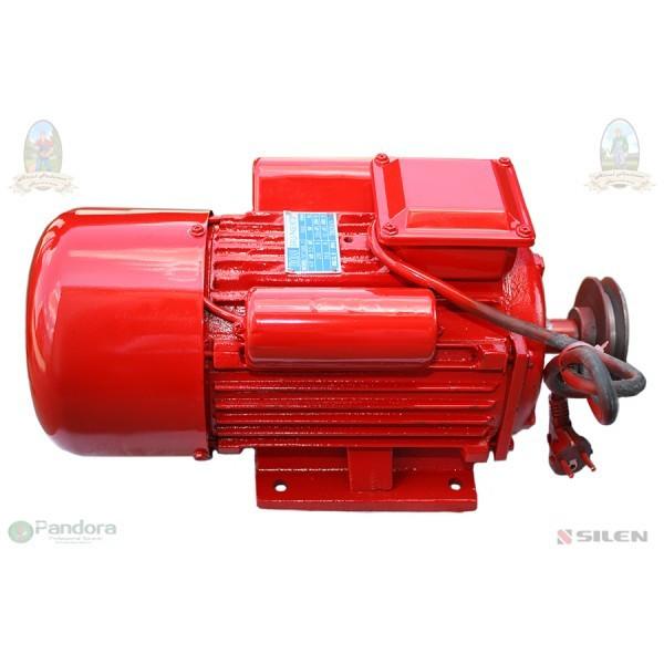 GF-1160 Motor electric 4.0 kw 3000rpm TROIAN ROSU foto mare