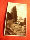 Ilustrata Valea Vinului - Vedere in Colonia Miniera 1934 Ed. M.Szenkovits Rodna
