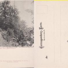 Gura Humorului ( Bucovina , Suceava )-clasica,rara -Leon Konig, Necirculata, Printata