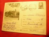 Carte Postala Ilustrata - Zimnicea - Parcul cod 531/70, Circulata, Printata