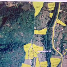 Teren intravilan Costesti, jud Hunedoara - Teren de vanzare, 4100 mp