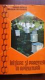 Initiere si practica in apicultura