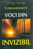 Voci din invizibil - Florin Gheorghita