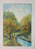 Tablou Diaconu Dumitru Peisaj 11 - 43.0 x 30.5 cm
