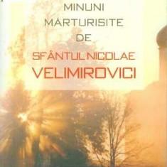 Puterea lui Dumnezeu in minuni marturisite de Sf. Nicolae Velimirovici - E. Marinescu