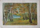 Tablou Diaconu Dumitru Peisaj 4 - 35.1 x 24.3 cm