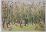 Tablou Diaconu Dumitru Peisaj 10 - 35.0 x 25.0 cm