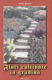 Flori cultivate in gradina - Elena Selaru