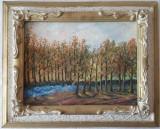 Tablou Diaconu Dumitru Peisaj 9 - 35.7 x 25.0 cm